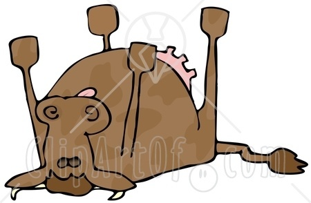Image result for clipart people viewing a dead cow