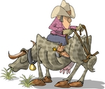 Texan Cowboy Man Seated Backwards on a Steer, The Reins Tied to the Tail Clipart